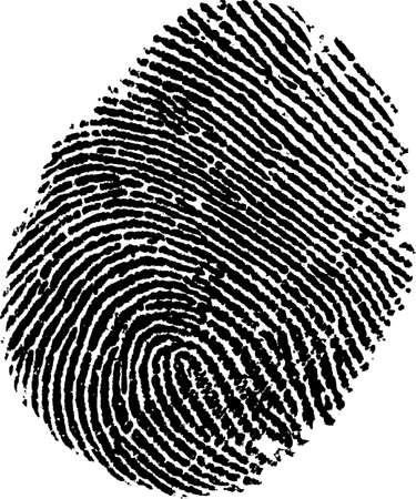 fingerprint /vector/ Stock Vector - 9930572