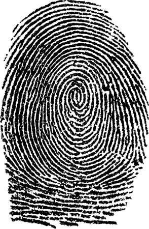 individualit�: impronta digitale  vettore
