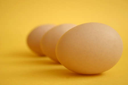 Closeup of a speckled brown chicken egg