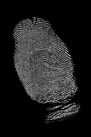 evidence bag: Fingerprint on black background  Stock Photo