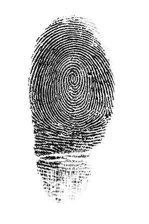 object print: Fingerprint on white background
