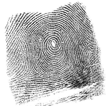 Fingerprint on white background
