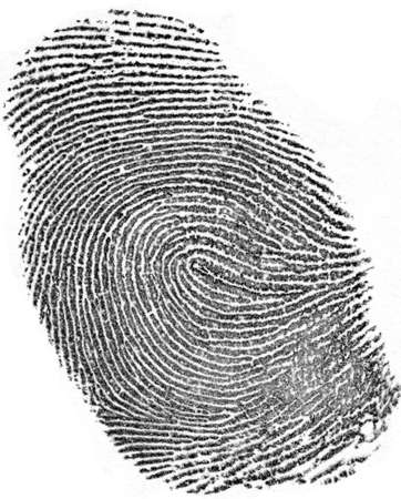 evidence bag: Fingerprint on white background
