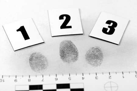 misdemeanor: View of a fingerprint revealed by printing.