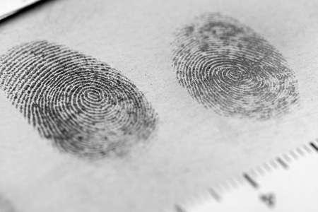 delincuencia: Vista de una huella dactilar revelado por la impresión.