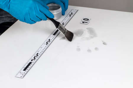 incriminate: Disclosure of forensic evidence using fingerprint powders. Stock Photo