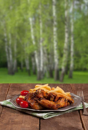 Picnic meal  Baked wings to eat at a picnic in the forest  photo