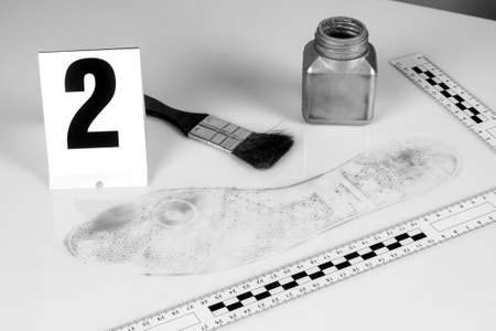 revealing tracks: Revealing and preserving the shoe prints- investigation of the scene.