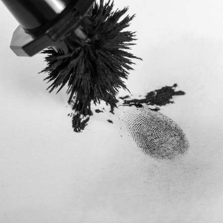 prosecute: View of a fingerprint revealed by printing.