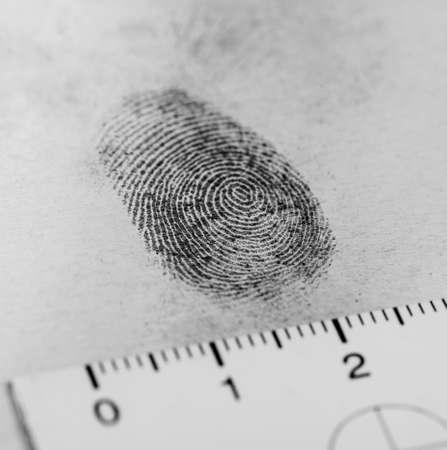 investigación: Vista de una huella dactilar revelado por la impresión.