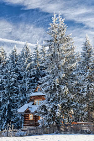 snow house: Snow house in winter dreamland at dawn in forest. Stock Photo