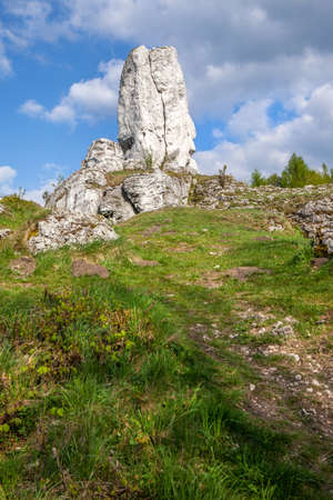 mirow: Jurassic limestone rocks - Polish Jura. Polish landscape.