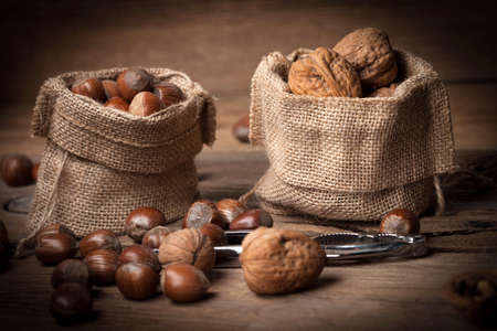 Walnuts and hazelnuts in burlap bag on old wood table. Dark light.