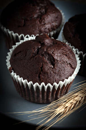 field depth: Chocolate muffin on dark background. Shallow depth of field.