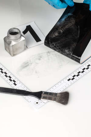 friction ridges: Revealing and preserving the shoe prints- investigation of the scene.