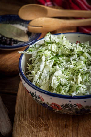 Salad with cabbage and dill in a bowl. Stock Photo