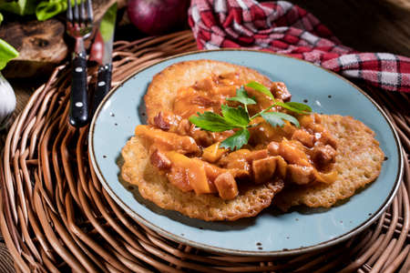 Delicious homemade potato pancakes served with goulash. Imagens