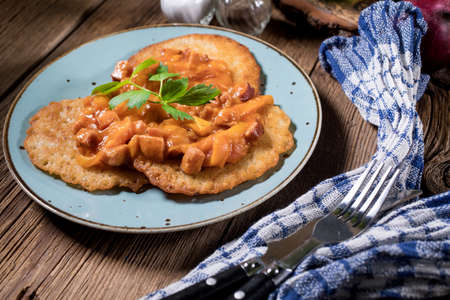 Delicious homemade potato pancakes served with goulash. Zdjęcie Seryjne