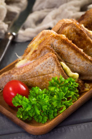 Grilled cheese sandwich on plate. Shallow depth of field.