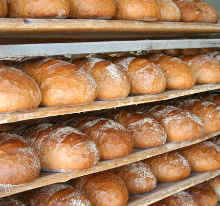 panadero: Pan alimentos