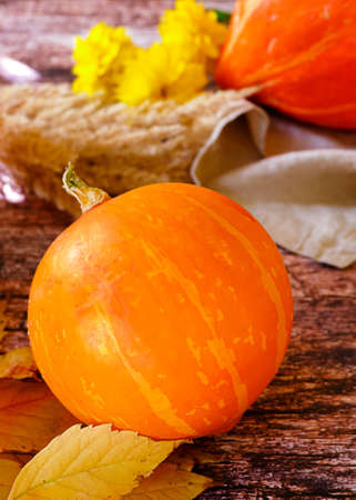 Autumn harvest. A mellow pumpkin on a rustic background with yellow flowers Foto de archivo