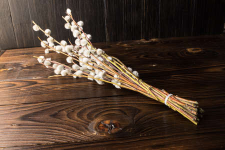 A bouquet of fluffy willow branches (Salix gracilistyla) on a wooden board background 스톡 콘텐츠