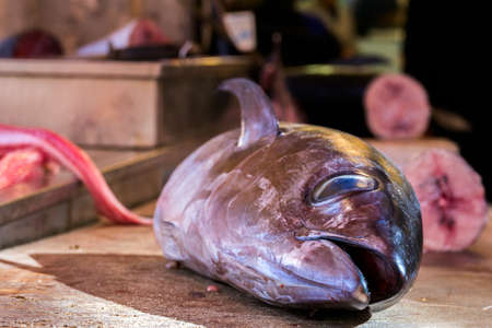 butchering: sewered head of a tuna at the fish market