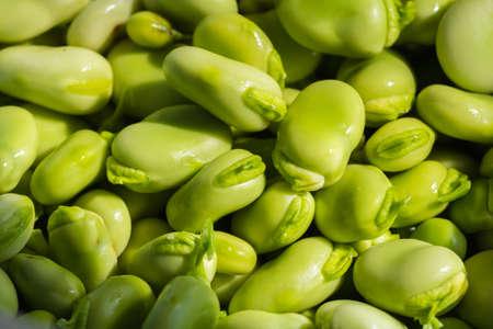 Pile of Fava beans, Vicia faba