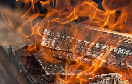 burning firewood for a shish kebab close up Stock Photo - 14824209