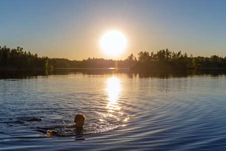 woman is swimming in a forest lake at sunset Banco de Imagens