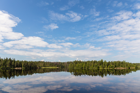 summer landscape with reflection of the sky on a forest lake