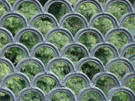 figured: Figured lattice of a fence through which trees are visible