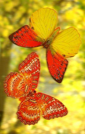 etude: Etude with butterflies. A vertical.
