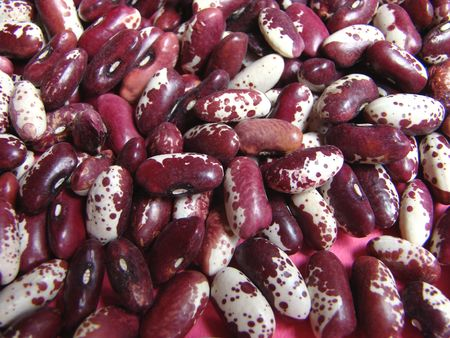 l first: Large red Moldavian string bean Phaseolus L. Suits preparation as first and second dishes.