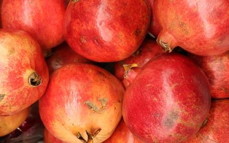 granatum: Pomegranate (Punica granatum) - plant species from the genus Pomegranate lythraceae family (Lythraceae)