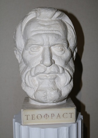 philosophy of music: Theophrastus - the Greek philosopher, scientist, music theorist
