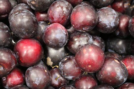 relative: Plum (Prunus) - fruit plants rose relative