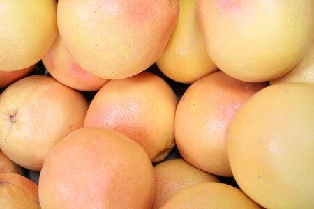 subtropical: Grapefruit (Citrus paradisi) - subtropical evergreen tree with juicy fruits