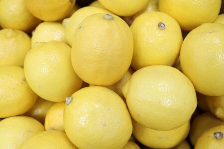 Lemon (Citrus limon) - plant. Lemon is also called the fruit of this plant