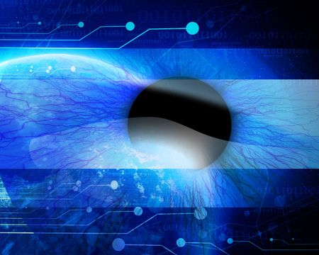 retina scan: Eye being scanned by security software