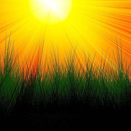 Burning red sun with green grass elements photo