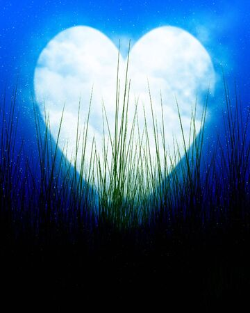 soul mate: Heart shaped moon in blue sky with some grass