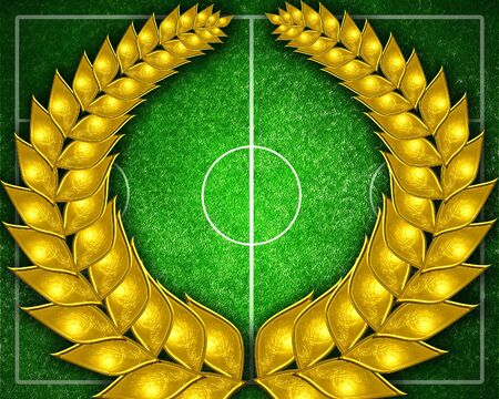 Soccer field with lines on grass photo