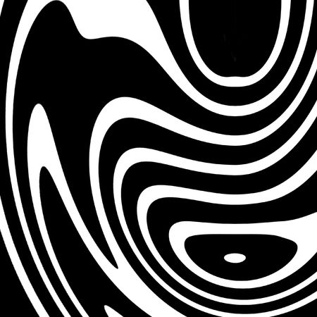 zebra texture in the colours white and black photo