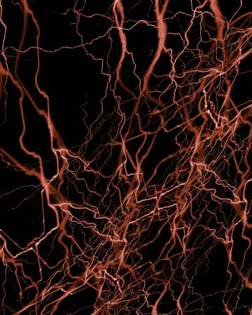 hormon: human nerve system on a black background