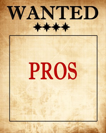 proffesional: old wanted paper with some damage on it