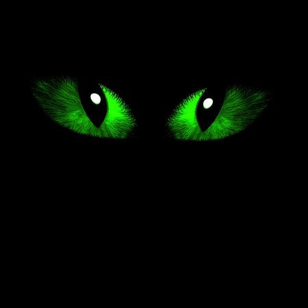 Two feline eyes on a dark black background