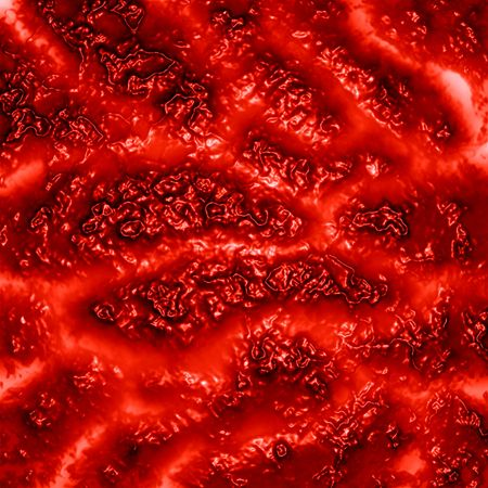 human vein: human tissue or veins on a red background