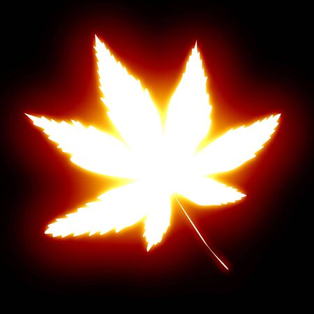 glowing marihuana leaf on a dark background photo