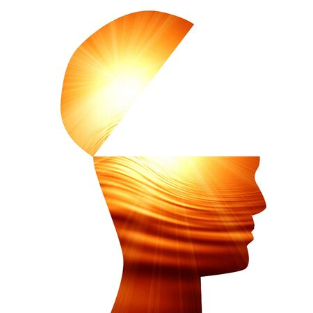 head silhouette: Human head silhouette with focus on the brain Stock Photo